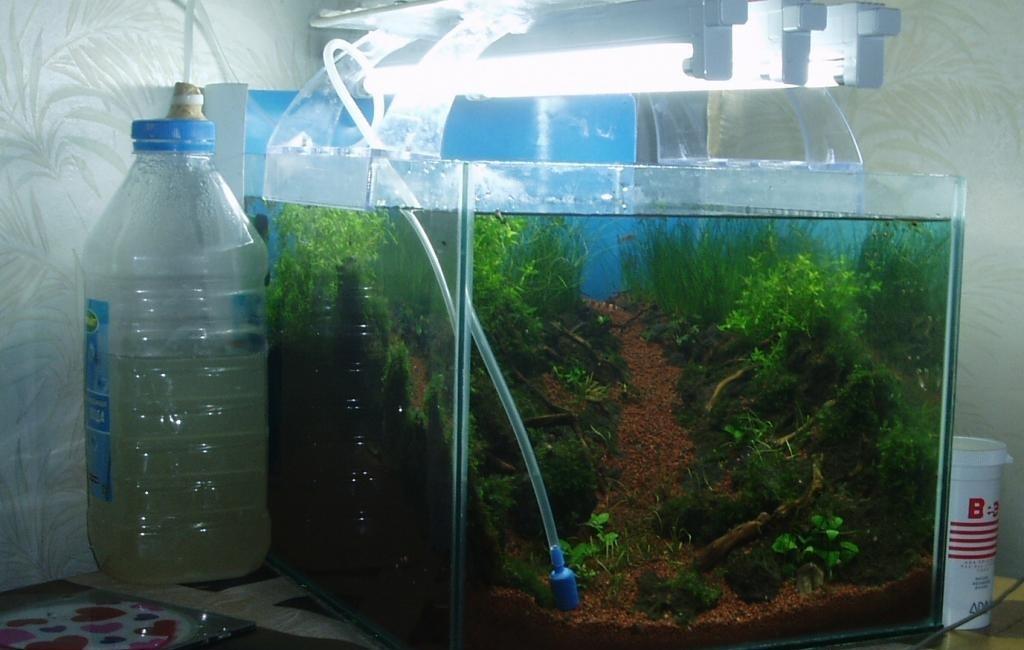 система co2 для аквариума