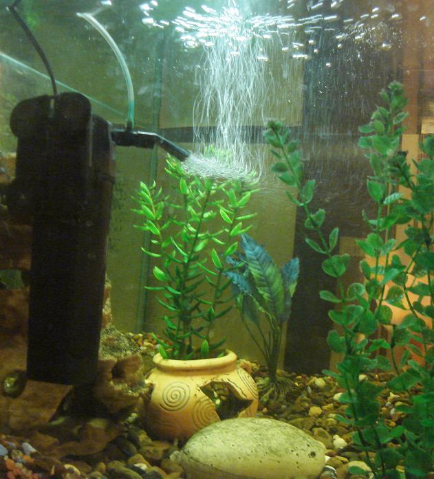 Ремонт аквариумного оборудования | Посейдон