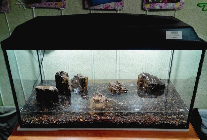 Какие камни можно использовать для аквариума