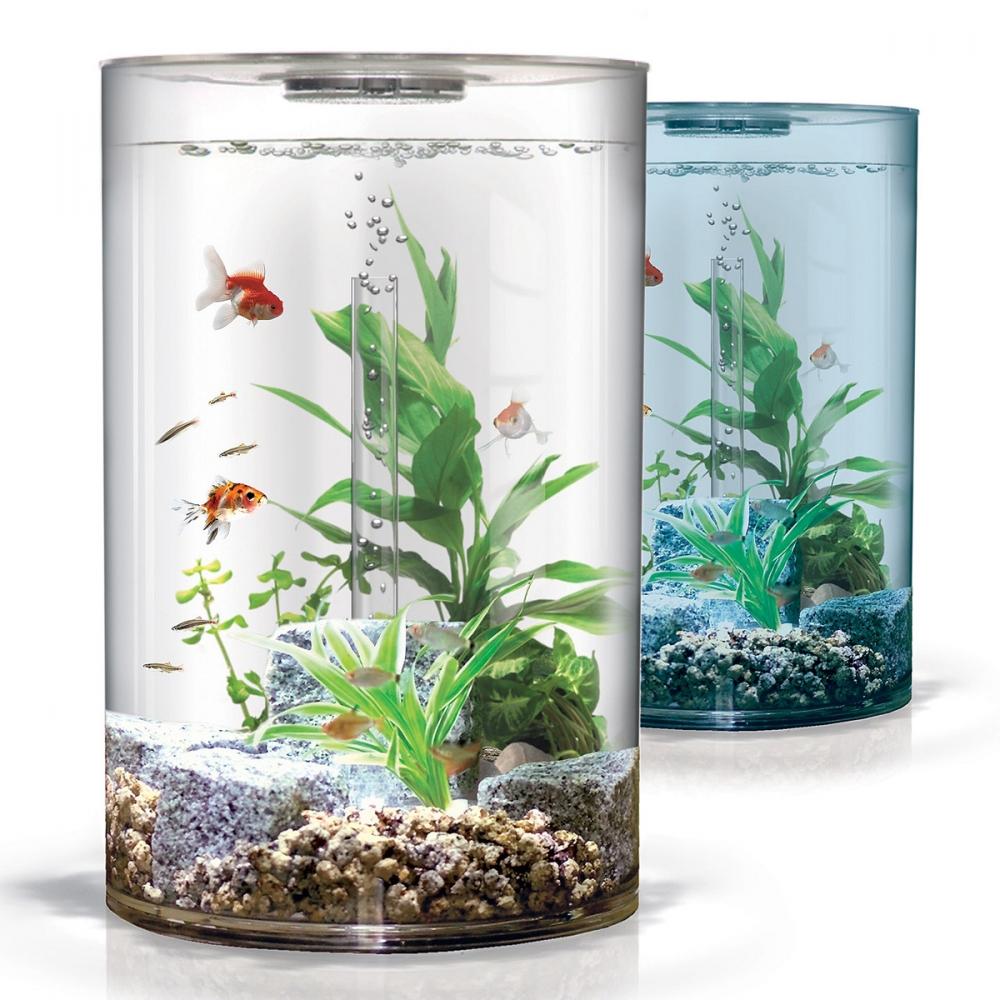 Аквариум, карантин для аквариумных рыбок