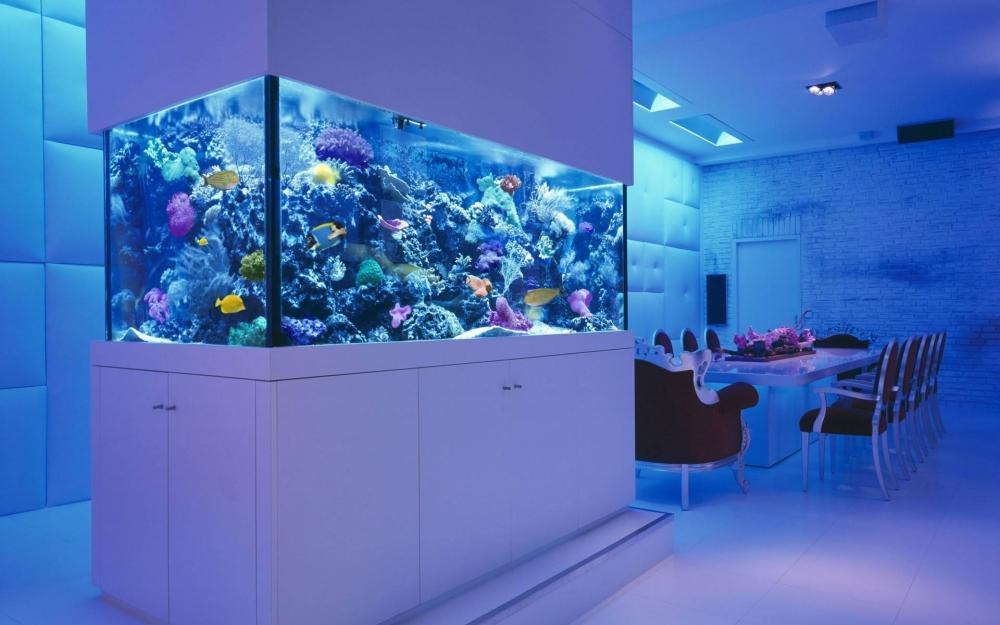 расчет объема аквариума по размерам