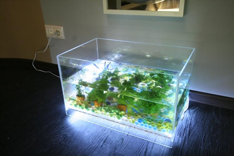 свет в аквариум для растений