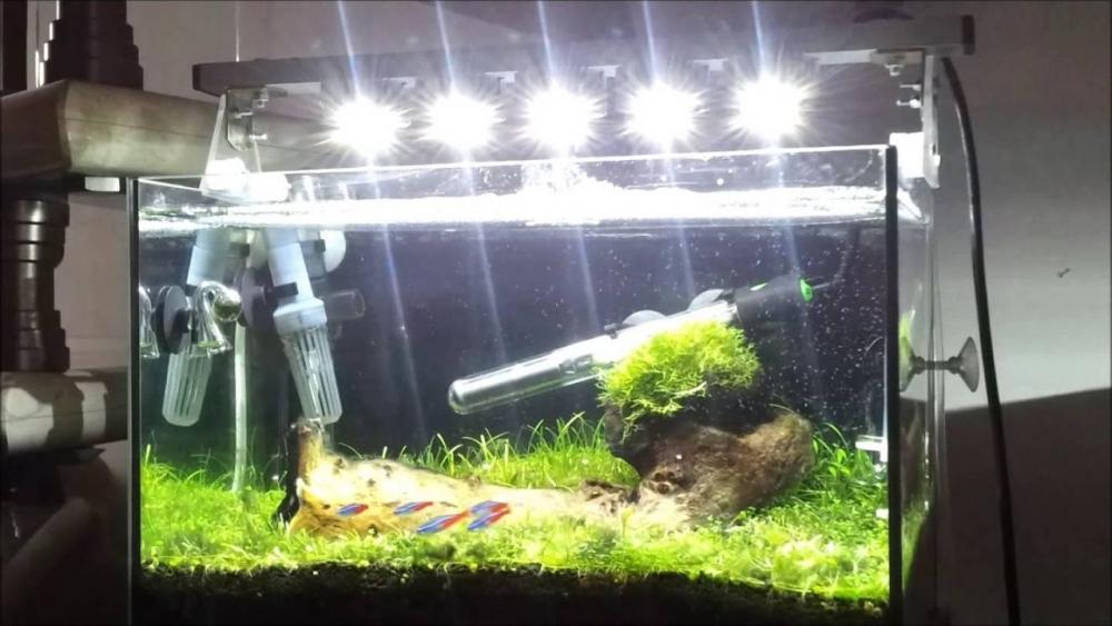 сделать свет в аквариуме