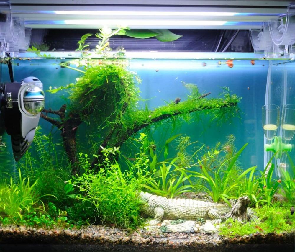 собрать фильтр для аквариума