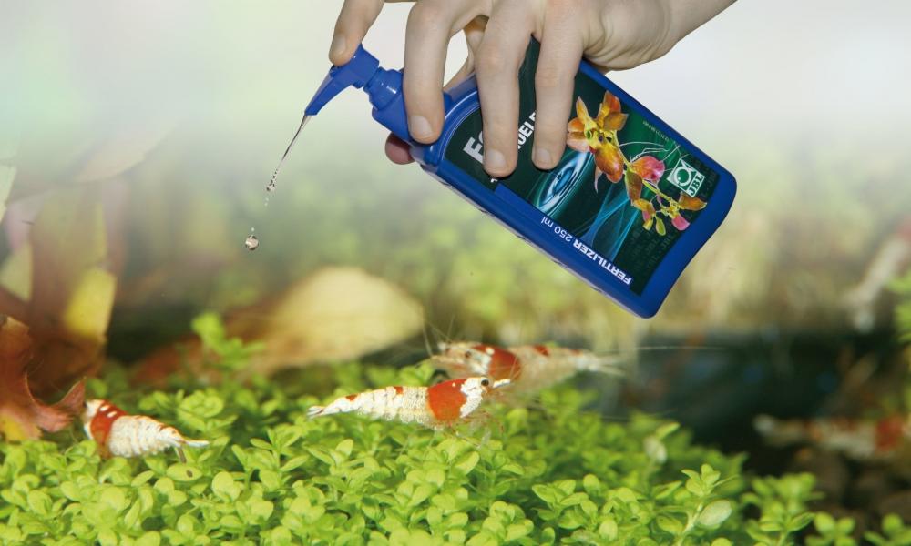 Удобрения для аквариумных растений своими руками: фото, видео
