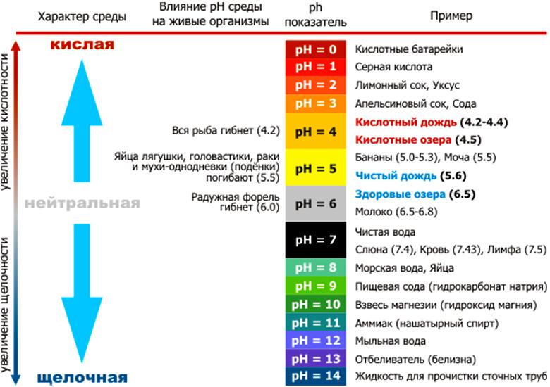 Анализатор кислотности воды pH-метр PH-009(I) - АльфаЭко - Новосибирск