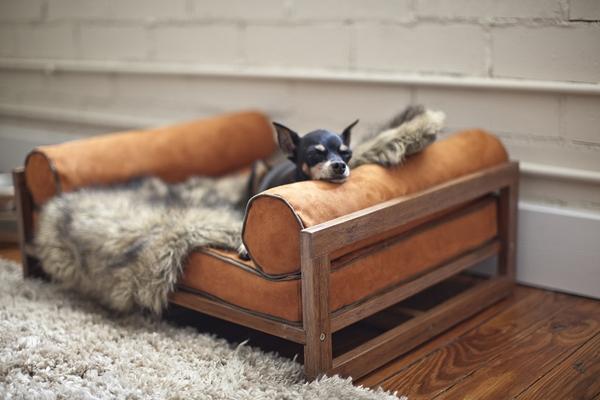 спальное место для собаки