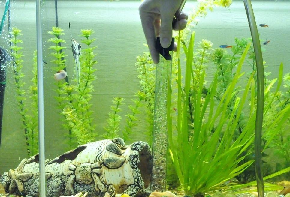 грунтоочиститель для аквариума