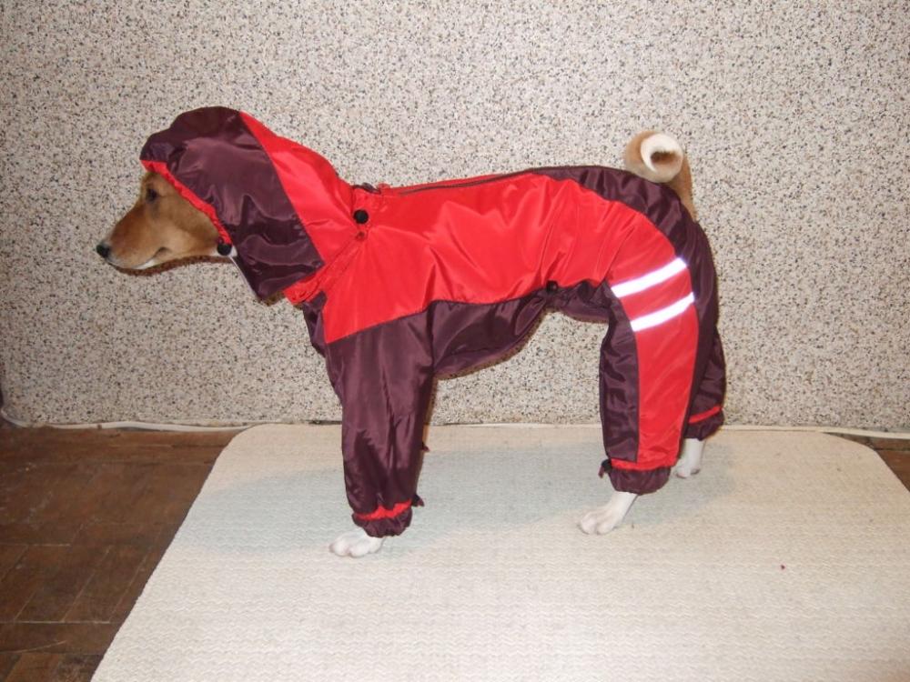одежда для маленьких собак своими руками выкройки