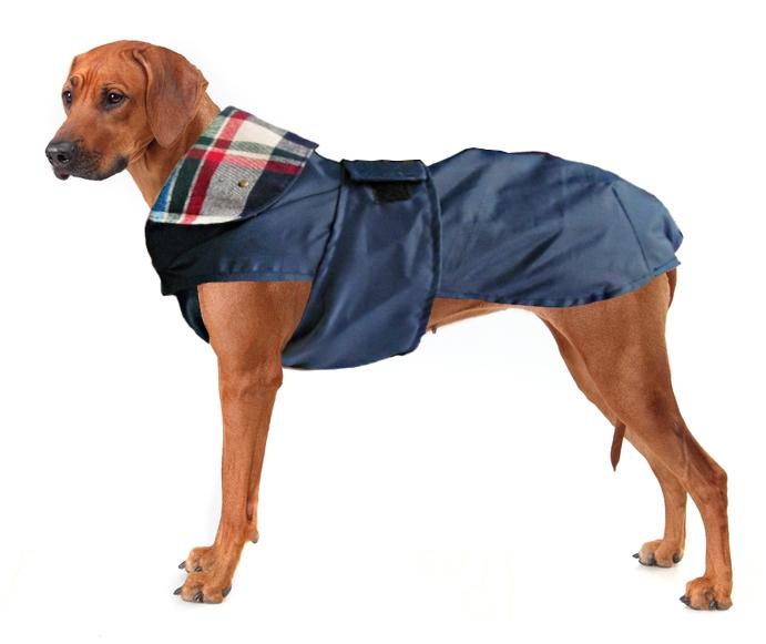выкройки комбинезонов для собак крупных пород