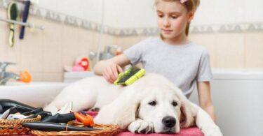 Расческа для собак - фурминатор