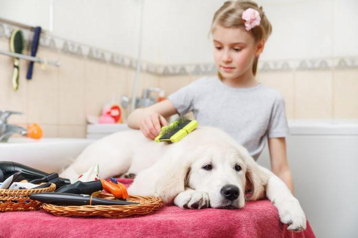 расческа для собак фурминатор