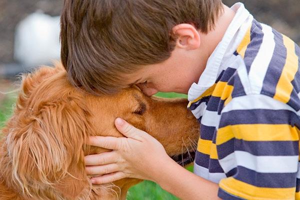 пережить смерть собаки советы психолога