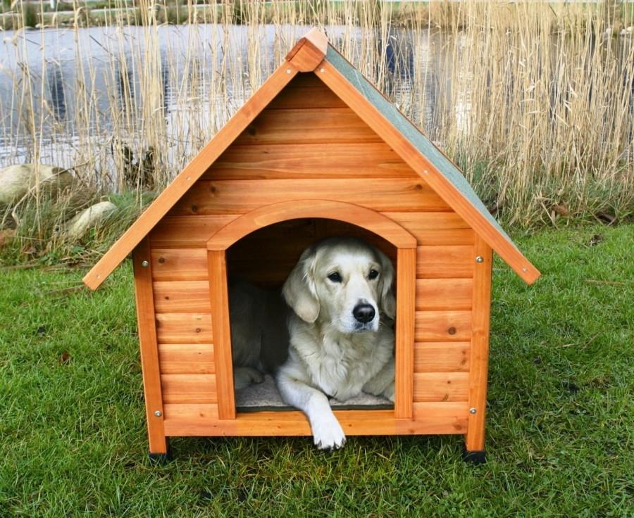 сколотить будку для собаки