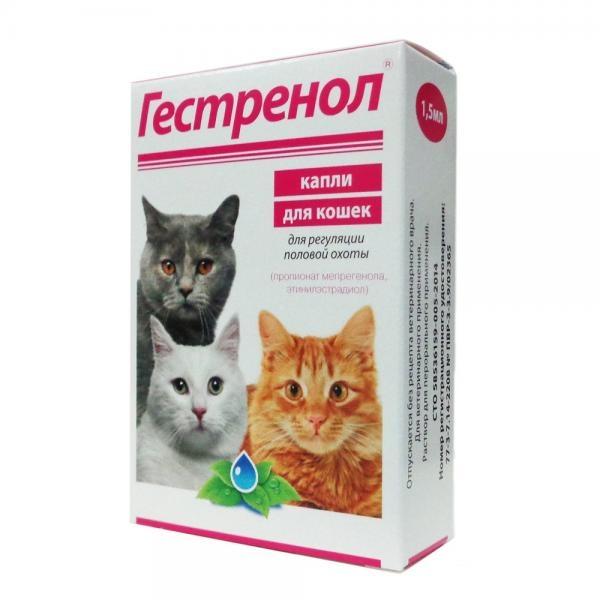 капли для кошки от хотения кота