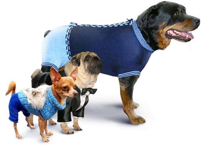 размеры комбинезонов для собак