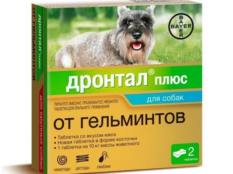 противогельминтные препараты для собак