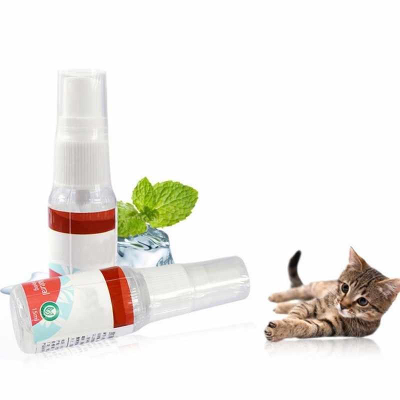 власоеды у кошек симптомы фото